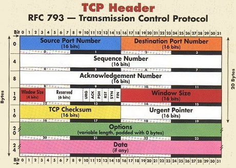 TCP IP Protocol Header