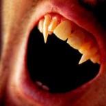 History of Vampires