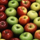 History of Apple Fruit